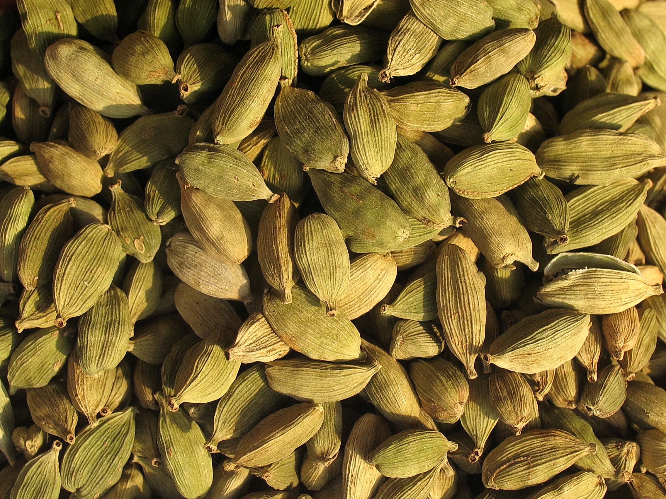 Kardamom - Heilpflanzenwissen — Heilpflanzenwissen